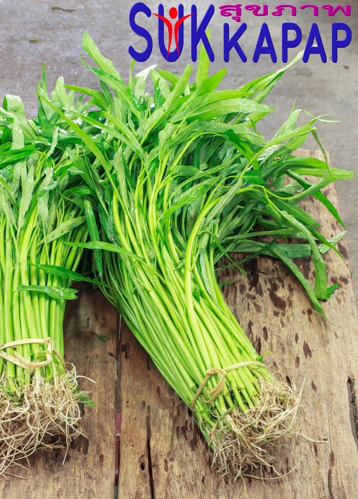 ประโยชน์ของผักบุ้ง