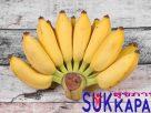 กล้วยน้ำว้า มีประโยชน์และสรรพคุณอย่างไรบ้าง